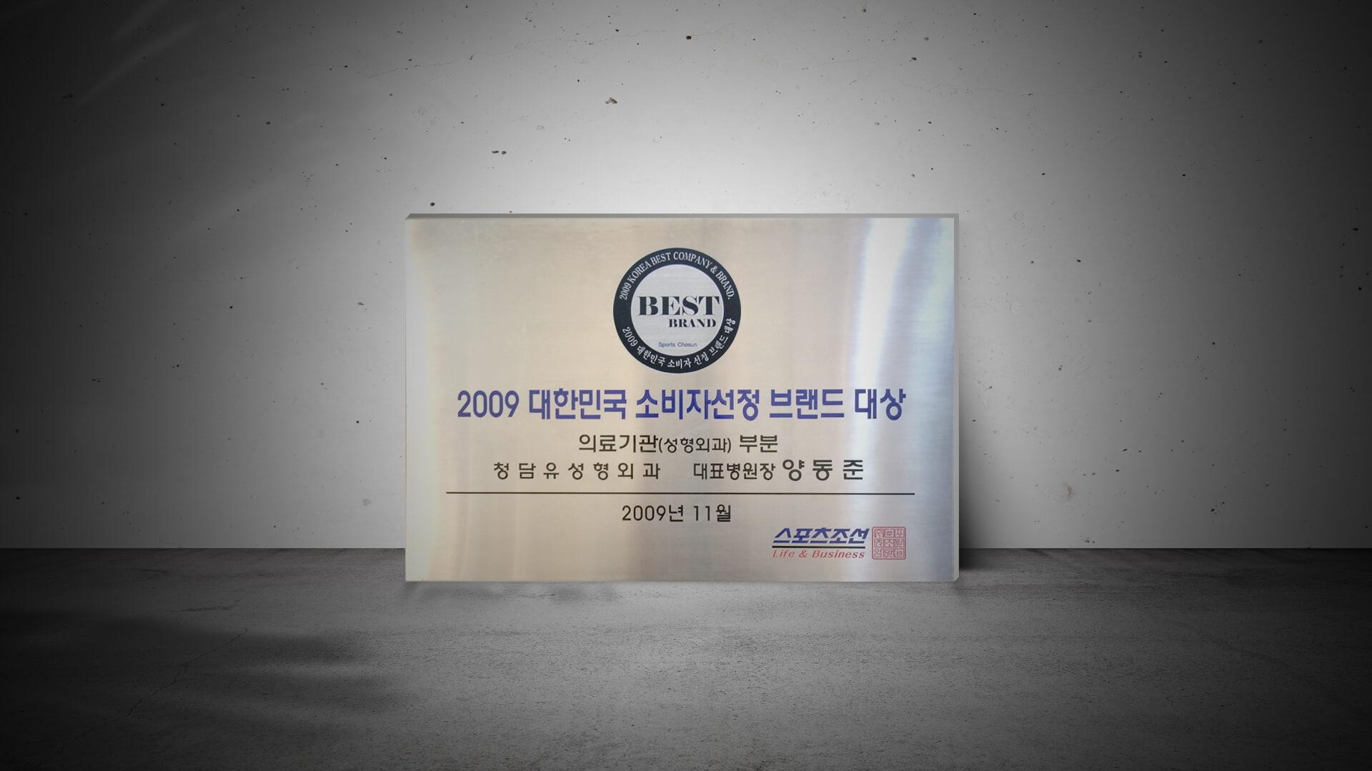 2009 Korea Best Brand Awards